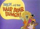 The_Hair_Bear_Bunch.jpg